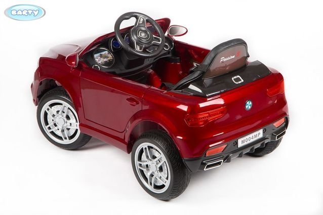 BARTY BMW X5 M004MP Бордовый18_result